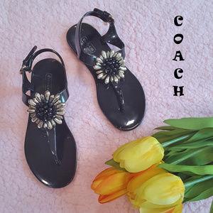 EUC Coach Sunflower Jelly Thong Sandals